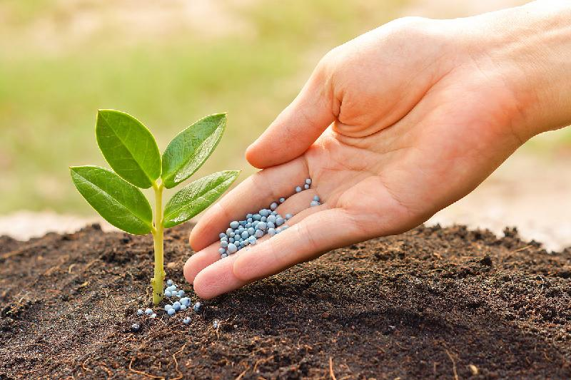 News on the registration of fertilizers in Kazakhstan